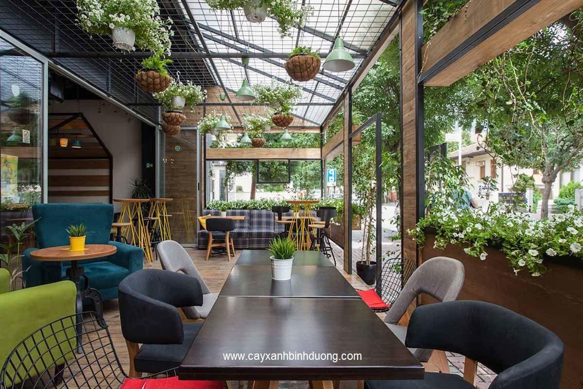 Cafe San Vuon An Tuong1555923369
